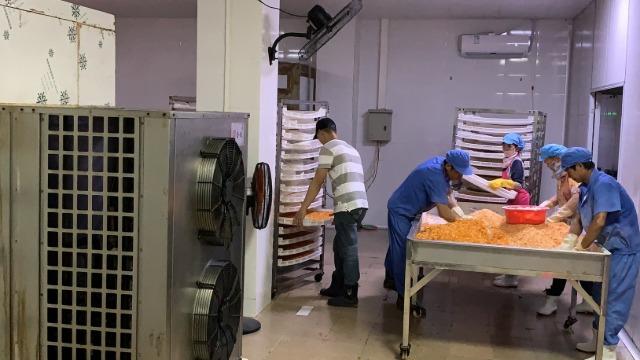 广东湛江福佳-----整体除湿烘干系统在果品菠萝干烘干中的应用