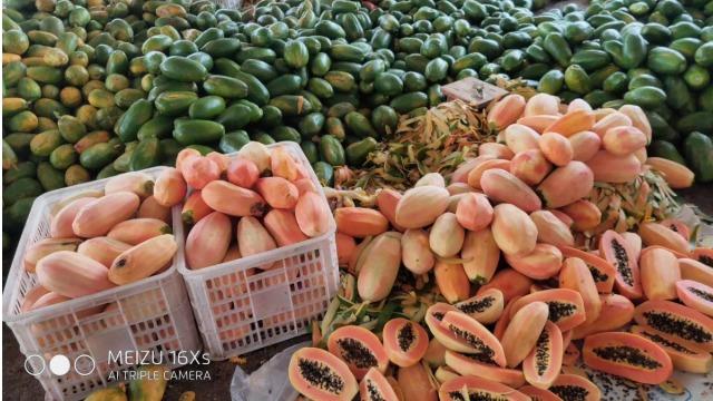 广东湛江福佳-----整体除湿烘干系统在果品木瓜干烘干中的应用