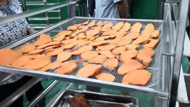 山东嘉祥圣亚-----高温热泵烘干系统在坚果红薯干烘干中的应用